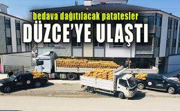 Bedava patatesler Düzce'de… Valilik ve Kaymakamlıklar tarafından dağıtılacak